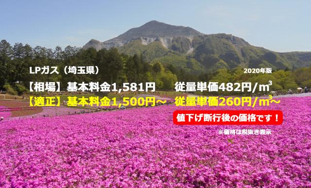 埼玉県LPガス相場と適正/羊山公園と武甲山